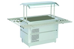 Salad Bar with Cold Pool Service Shelf & Light And Tray Stand